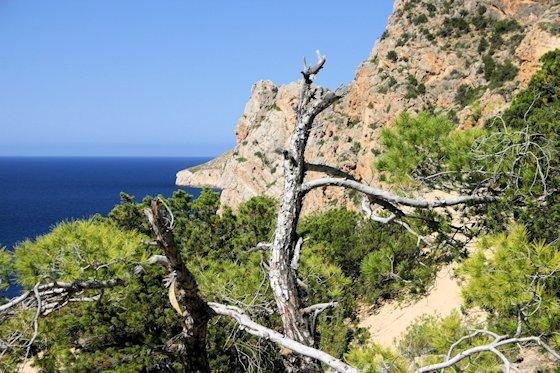 Wandern auf Ibiza - zum Steinbruch Atlantis